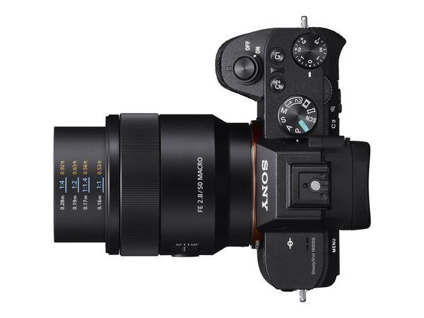 Sony SEL50M28 - macro lens - 50 mmSony SEL50M28 - macro lens - 50 mm, , hi-res