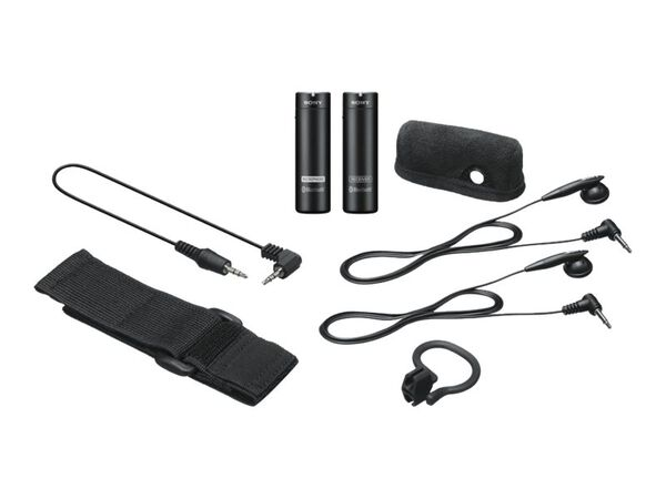 Sony ECM-AW4 - wireless microphone systemSony ECM-AW4 - wireless microphone system, , hi-res