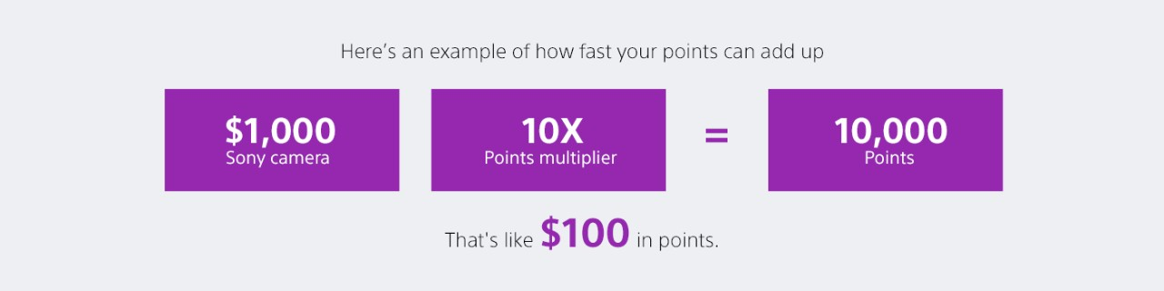 $1,000 Sony camera + 10X Points multiplier = 10,000 Points   That's like $100 in points.
